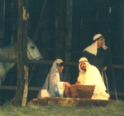The stable, and the manger